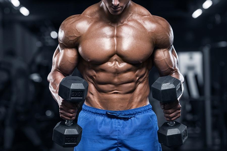 Complément alimentaire pour la musculation