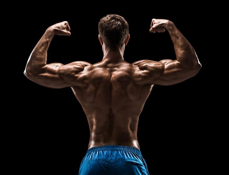 Résultats gain de masse musculaire avec D-Bal